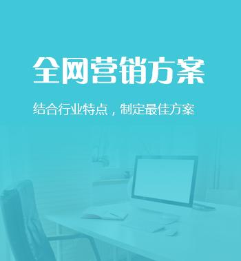 <b>企业全网营销方案定制</b>